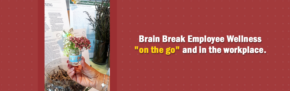 """Brain Break Employee Wellness """"on the go"""" and in the workplace"""