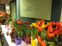 HT Week Statehouse Display Spring in Bloom