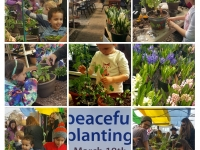 Horticultural Therapy Peaceful Planting Alstede Farms Photo Collage