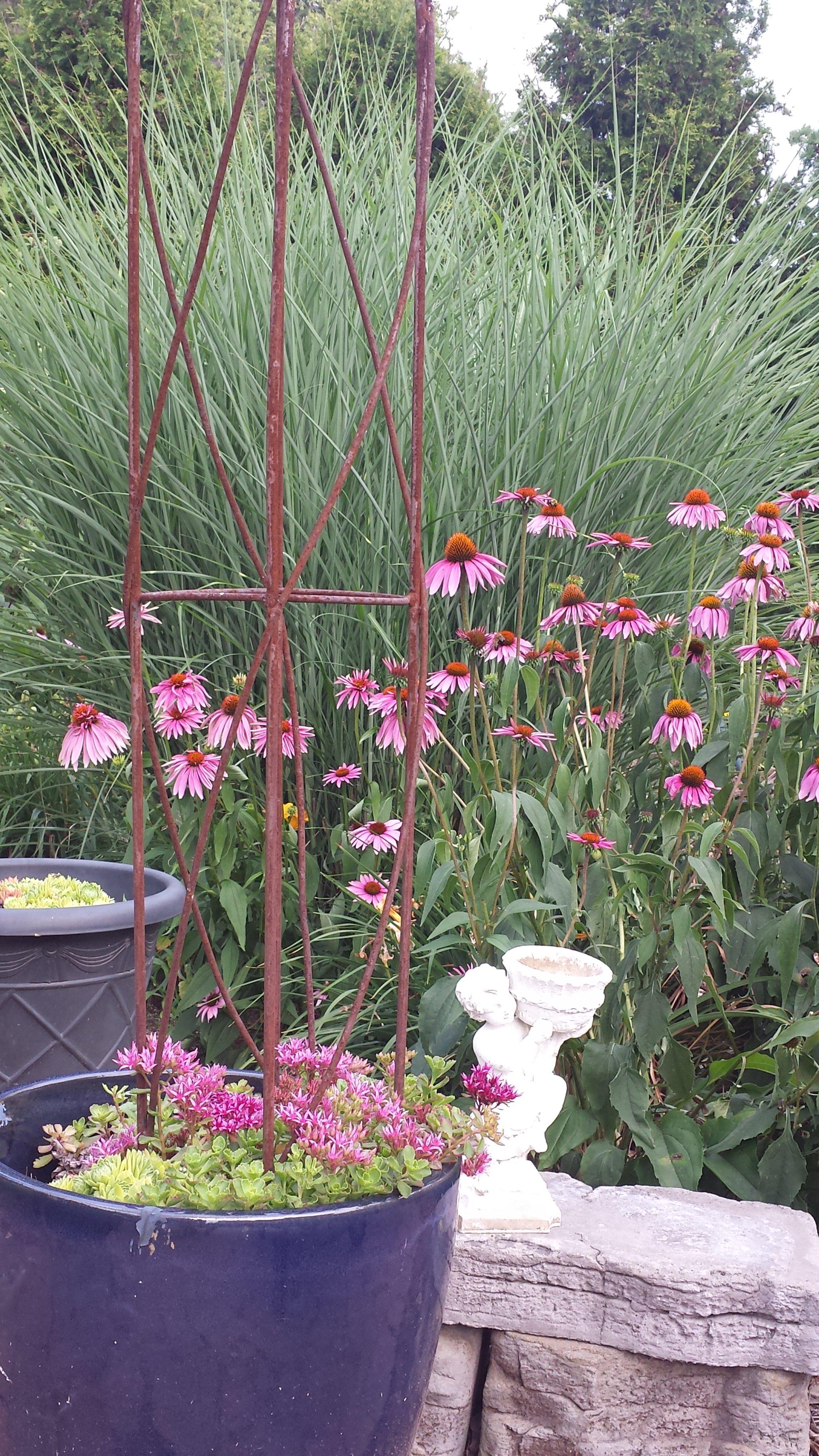 Plants that Provide Movement in the Plantscape