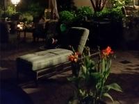 Backyard Summer Night
