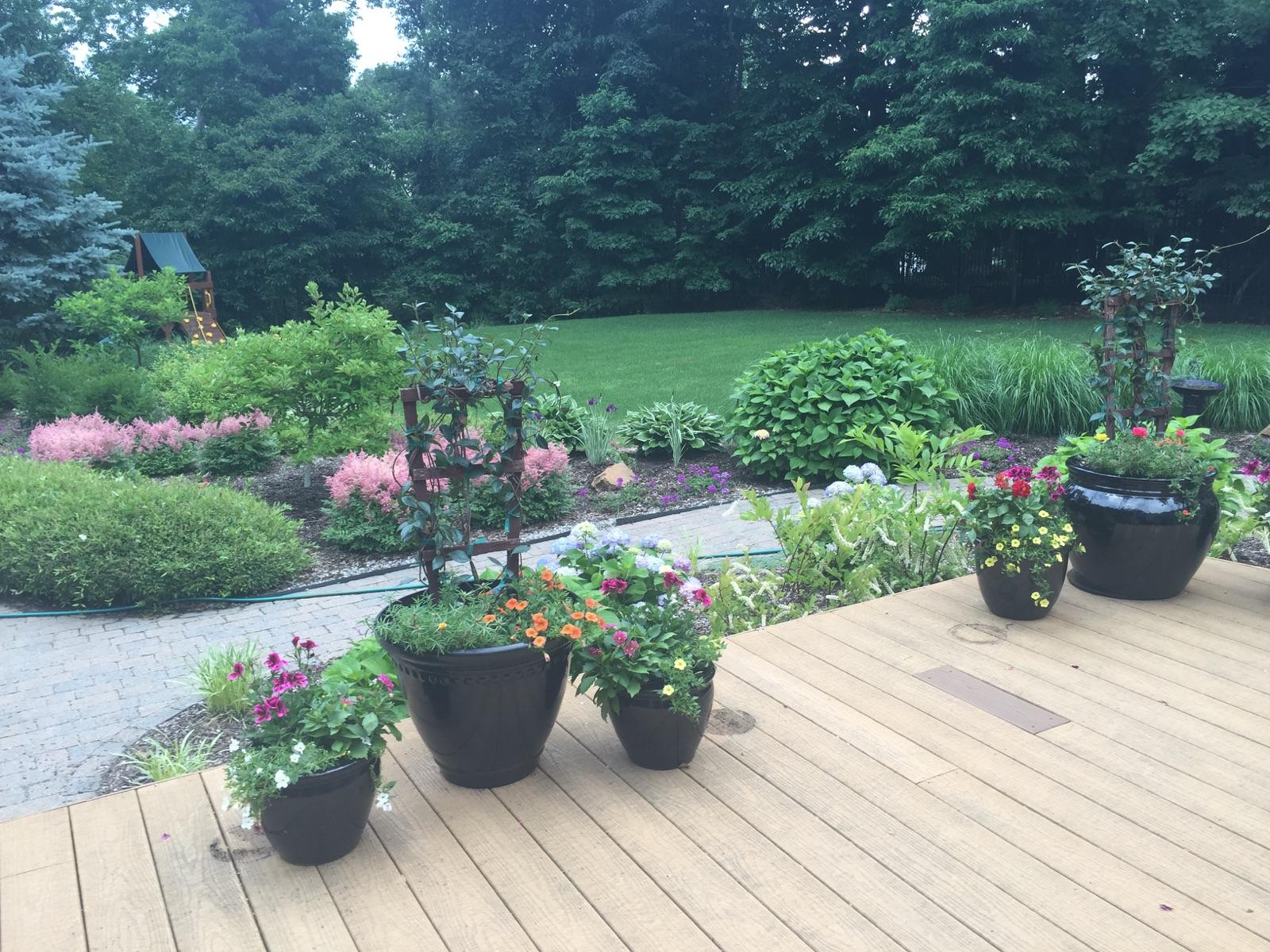 (Four Seasons of Color)Potting Up Plant Appeal