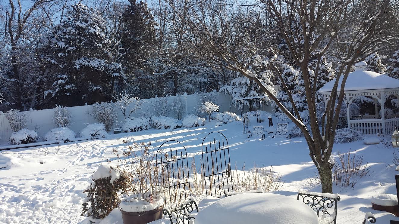 Winter Photo 2